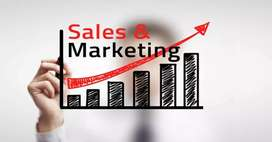 Sales and marketing work from home only for girls