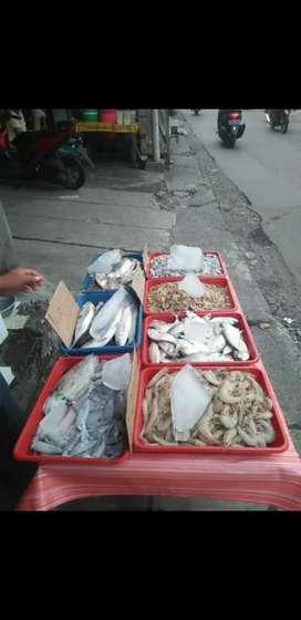 Ikan udang cumi fresh