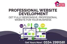 Professional E-commcere website, Ecommerce website, web design,website