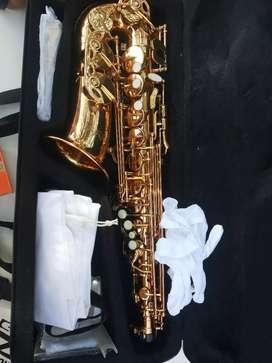 Alto saxophone AS 710 USA brand new