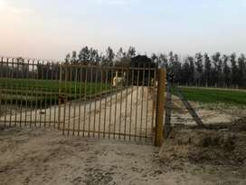 Land for sale near jahankhelan with 2 tubewell 28 lakh per killa