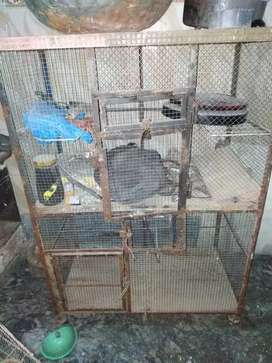 Steel cage iron cage lohay ka pinjra for love birds  aseel cocktail