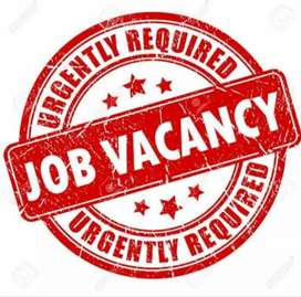 Job opening for Data entry and Survey work. limited vacancy available.