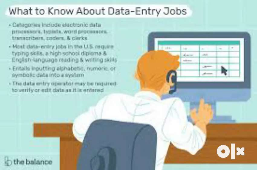 Data entry all type work 0