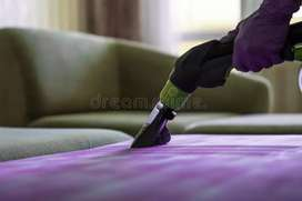 Sofa and chair wash neat cleaning homes