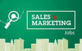SALES AND MARKETING IN  PHARMACEUTICAL COMPANY