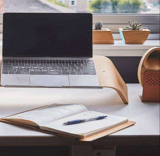 female required for data entry job 0