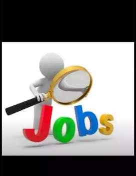 Job hiring fresher