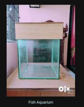 Fish Aquarium 2x2 feet