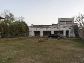House for rent in Charsadda tarnab for school, office or ngo's