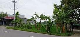 Tanah dijual, SHM, di Gemolong, Sragen, lokasi sangat strategis