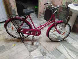 Lady cycle