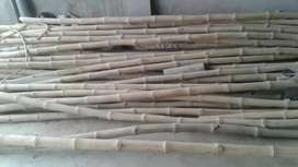 Bans , balli or chaily , 20ft bans 120rs /p ,chaily..100/p