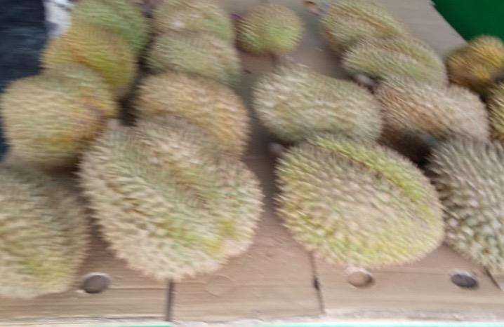 Durian montong per kilo muanizzz grosir mumer