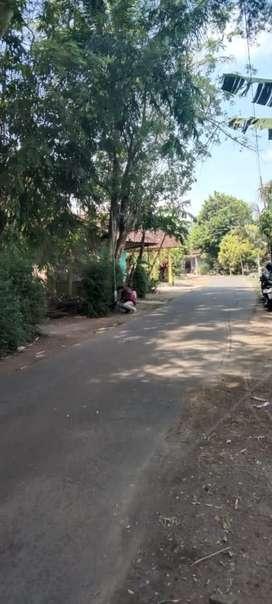 Tanah dijual murah di Seyegan Sleman Yogyakarta
