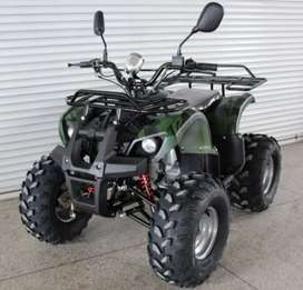 Trending 110cc Atv bikes for all age grps in Allahabad