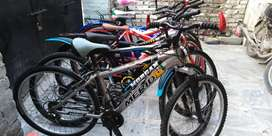 Beautiful Cycles Large Size Ready To Ride Excellent Condition