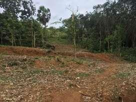 Commercial /Residentil/ Agricultural Land