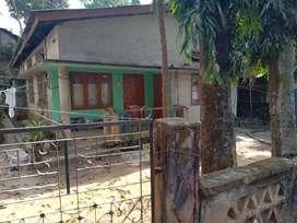 Sale a plot at Hengrabari