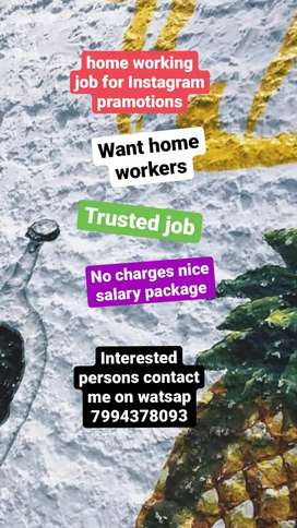 Want home workers job for Instagram prepaid pramotions