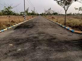 Polipalli village bisaid bangarajupeta