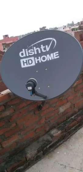 1 yar old dish tv