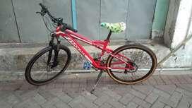 MTB Phoenix Sepeda Gunung