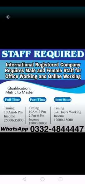 Male female staff required for online home base job