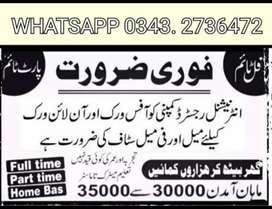 Searching people for job Male and female