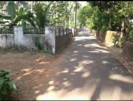 Prime house plot for sale in Calicut mavoor Road kottuli
