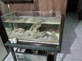 Jual aquarium bagus banget bekas air laut kaca tebel