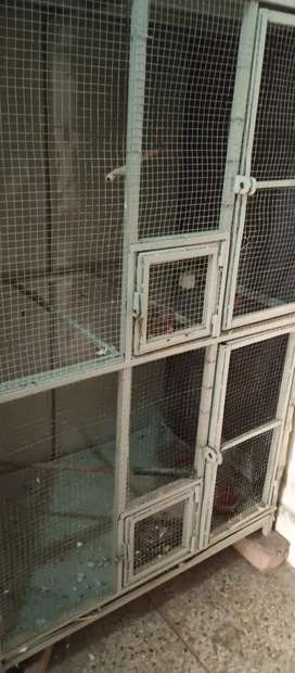 Rs 12000 Cage for sale size 5 by 3