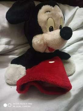 Mikey mouse jr