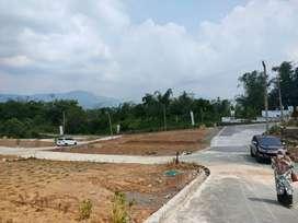 Tanah Kavling Villa Kebun Murah Lokasi Strategis Dekat Jalan Provinsi