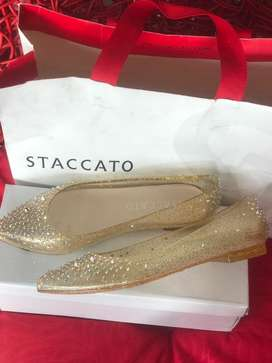 Staccato.. size 36