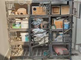Cage for sale 12 portion