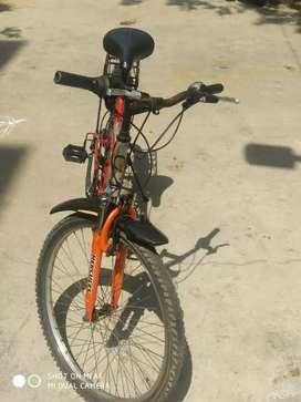Hercules roedeo gear cycle