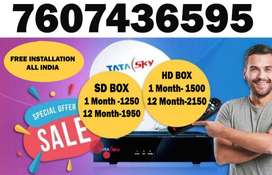 TataSky Special SALE DTH DISH TV D2H HD SD BOX Videocon LOWEST PRICES