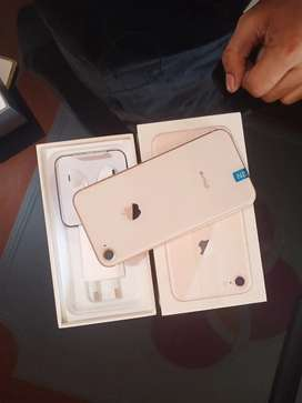 Brand new i phone 8 64 gb all color available