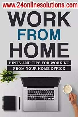Work from home online offline data entry