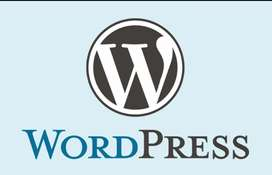 looking for an experienced wordpress developer minimum 2yr experience