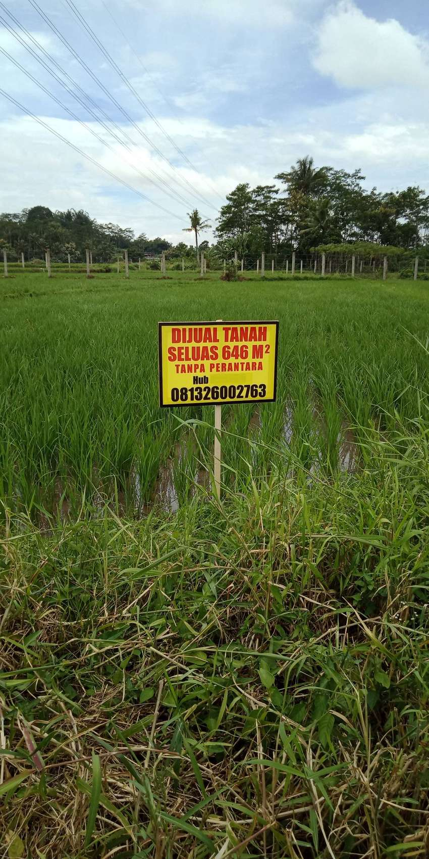 Jual tanah pinggir jalan raya. Cocok untuk usaha rumah atau gudang