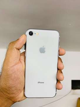 Apple iPhone 7 in pocket friendly price
