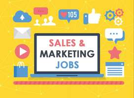 Sales & Marketing executive required
