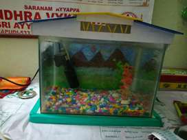 Aquarium with filter and oxygen