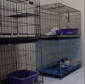 kandang kucing anjing dll 90cm jumbo baru ada tangga tingkat1