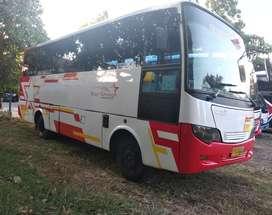 Bus medium 31 seat