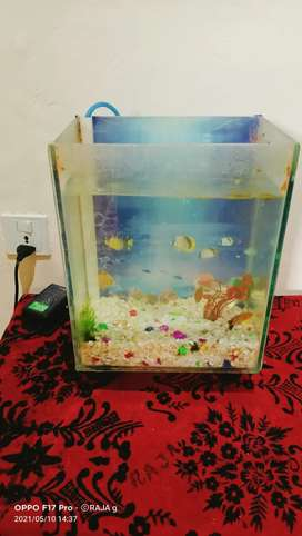Fish Aquarium for sale..