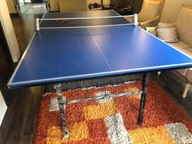 Table tennis table(ping pong table) with net