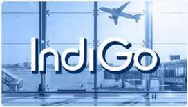 Urgent hiring for ground staff airlines company